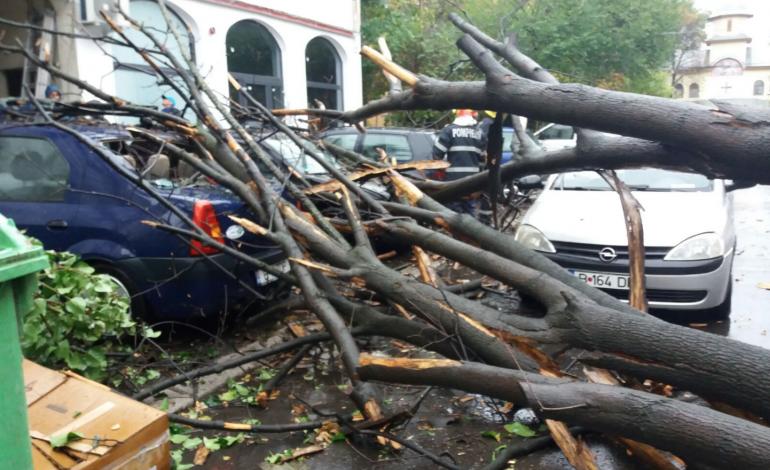 Două persoane rănite, 72 de vehicule avariate și 128 de copaci doborâți în urma furtunii de ieri din Capitală