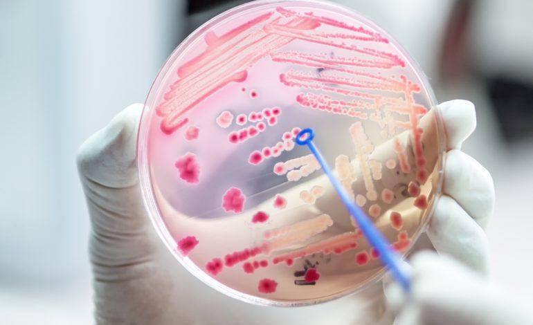 """Bacteria """"mâncătoare de carne""""- două victime în Texas"""