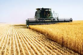 România și Bulgaria, ţările cu cel mai ieftin teren arabil din Uniunea Europeană