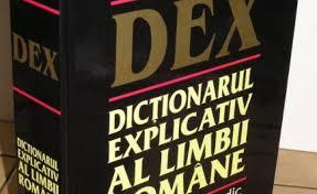 Guvernul a cumpărat 1.200 dicționare și gramatici de bază ale limbii române, acestea trebuie livrate la Palatul Victoria