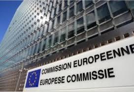 Iniţiativa România a trimis CE şi tuturor europarlamentarilor un raport privind evenimentele din România din ultimul an