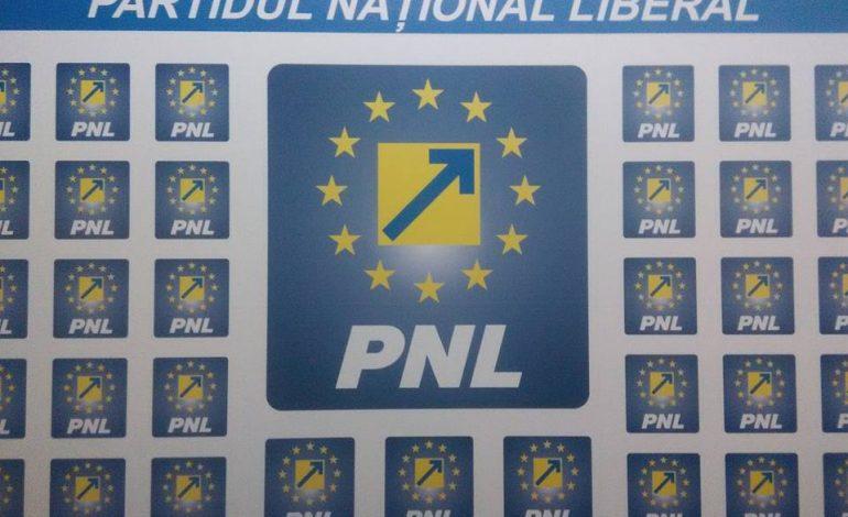 Moțiunea de cenzură a PNL: Guvernul-marionetă trebuie să plece
